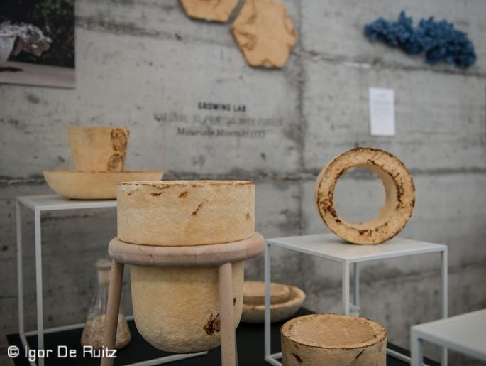 The Growing Lab, Maurizio Montalti (Ventura Lambrate)